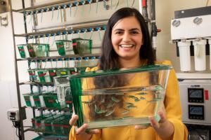 Anu Muppirala with zebrafish tank in lab